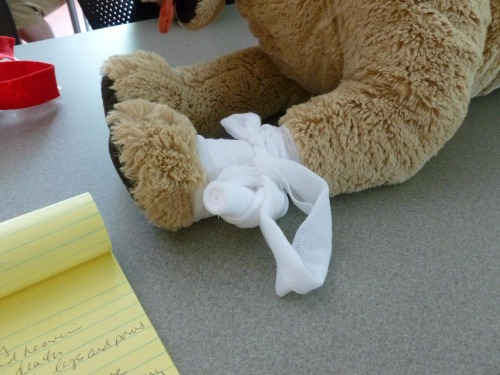 gauze bandage on toy dog's leg